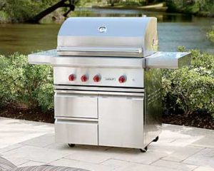 BBQ Cleaning in Wellington by BBQ Repair Florida.